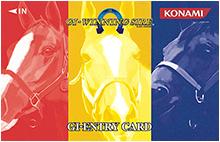 游戏卡 | 全磁薄卡